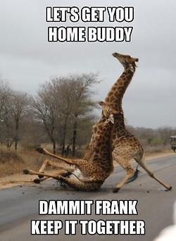 Haha...had a few of those nights!