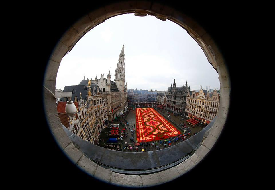 Giant flower carpet at Brussel Turkey