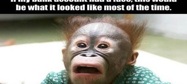 Monkey is Fonkey duration