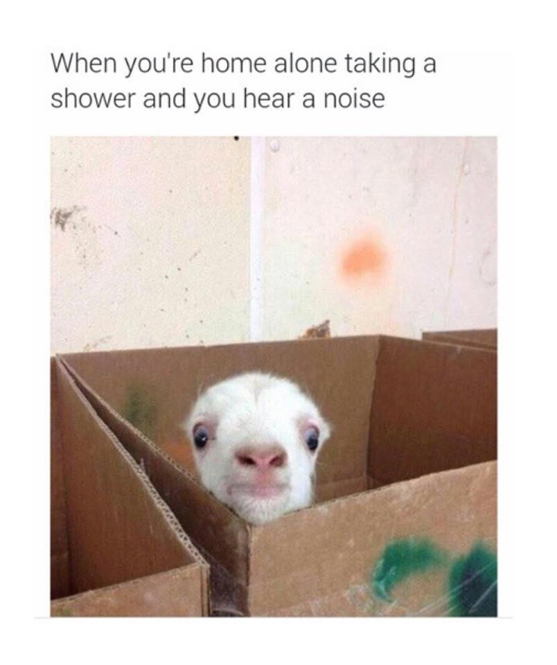 Home Alone Shower Reaction to noise