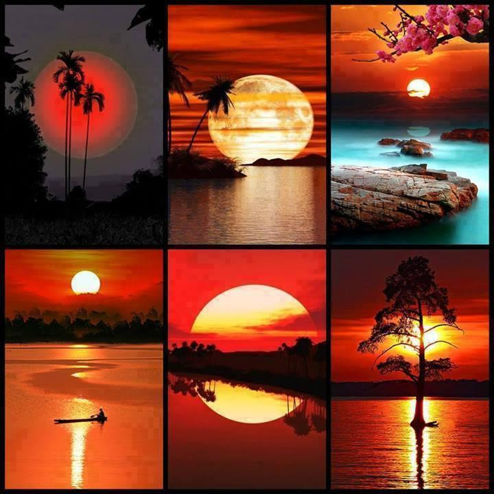 Amazing sunsets!