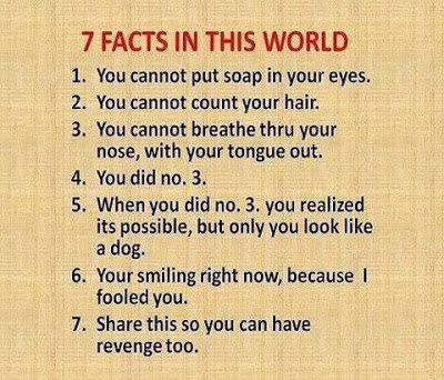 7  Facts of the world