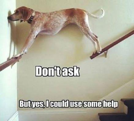 I could use some Help... LOL