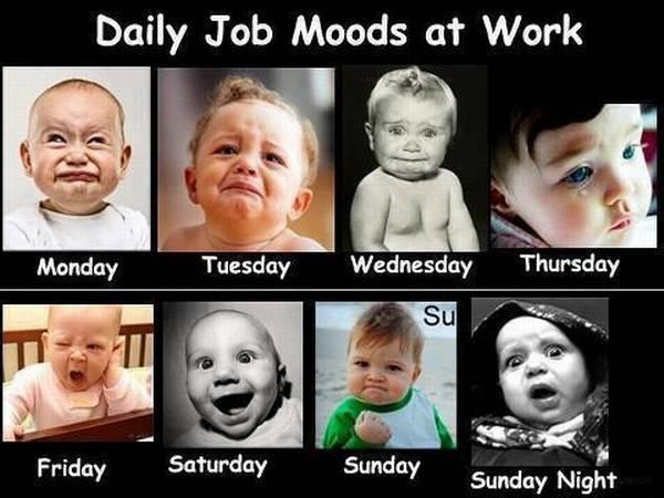 Daily Job Moods Of Work