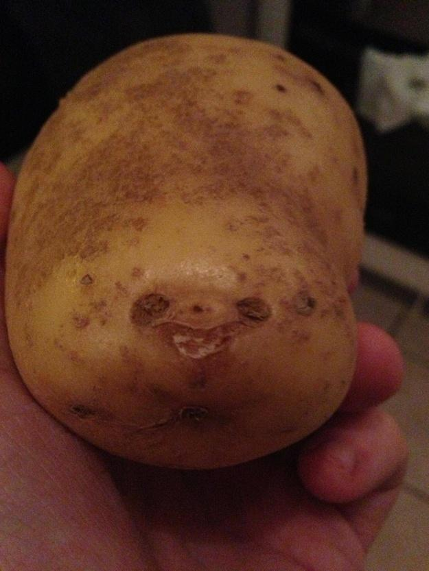 This Potato Looks Like A Sloth