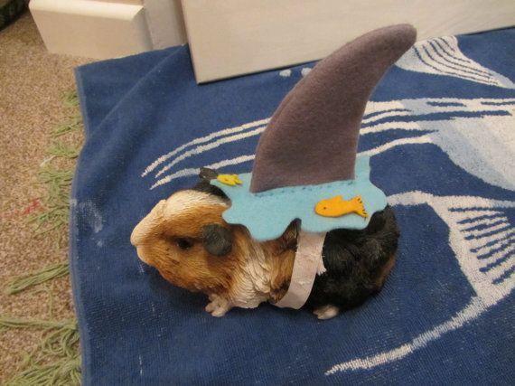 Hedgehog  Guinea pig Shark costume on Etsy