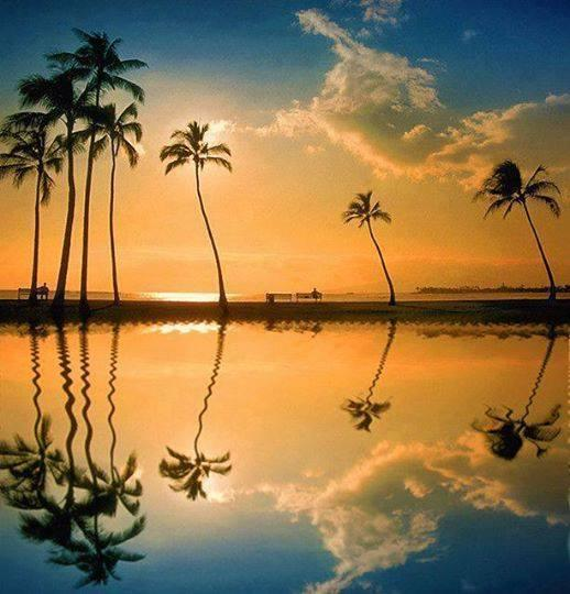 Lagoon, Honolulu, Hawaii... dreamlike!