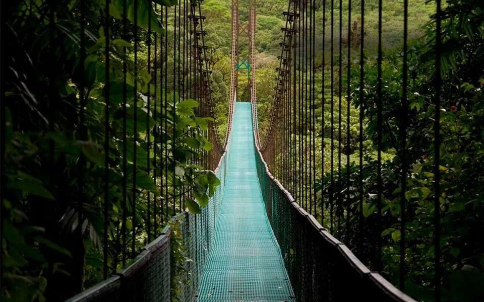 Amazing Bridge in Costa Rica