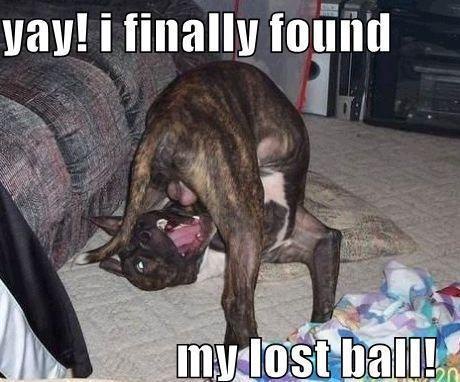 Finally i found my lost Ball... LOL