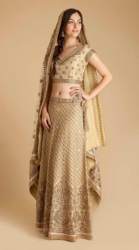 Beautiful Indian Traditional Dress