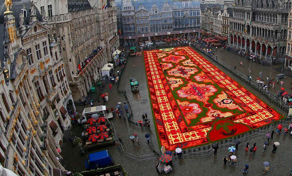 This year's theme for the flower carpet is Turkey and around 750,000