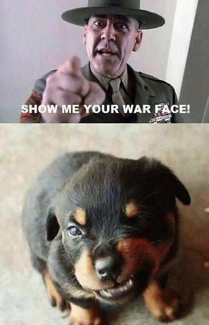 War Face, reminds me of Jiggs