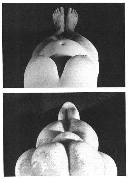 LeRoy McDermott argues that paleolithic venus figurines lose their dis