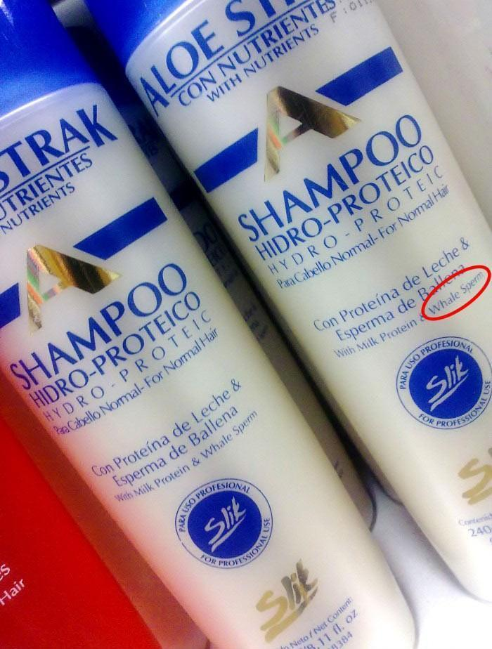 Whale sperm Shamphoo
