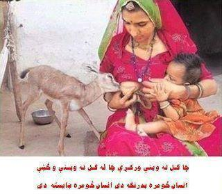 Mother is Soul of Universe