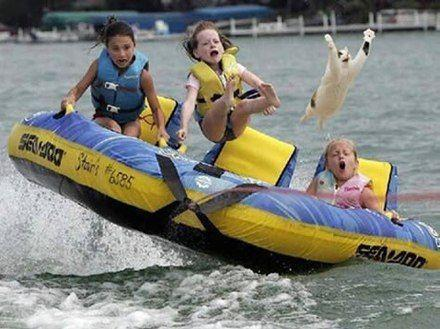 Who takes a cat tubing.. I could not stop laughing