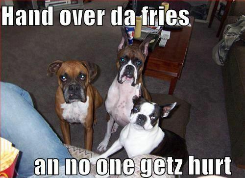 hand over the fries...lol