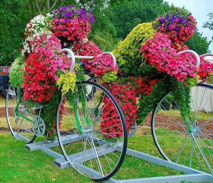 The cycling flowers at brockwell park, London
