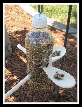 Amazing Bird Feeder