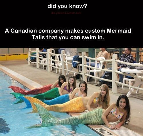 I want one!!
