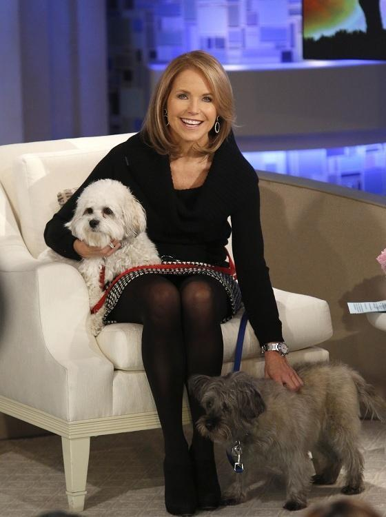 Katie Couric with Cooper and Maisy