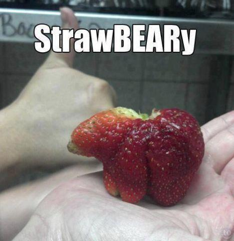 Odd Strawberry