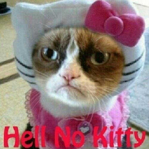 Hell-no Kitty
