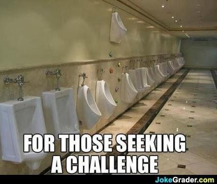 Now who would see this as a challenge to take a ladder to a toilet....