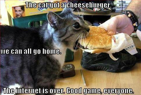 Cat Cheese Burger