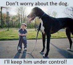 Do'nt worry about dog, i'll keep him undercontrol