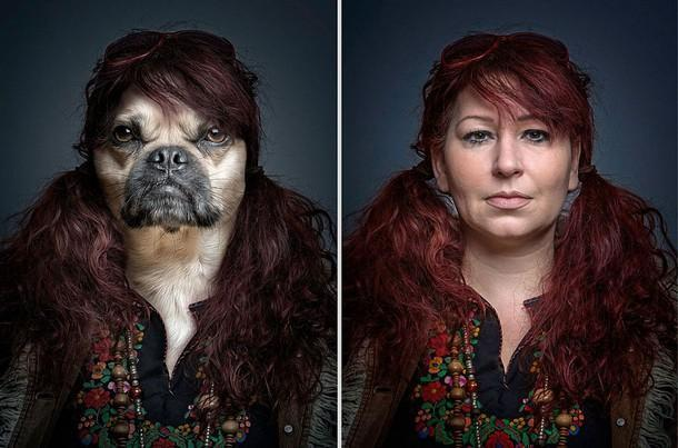 funny portraits of dogs dressed