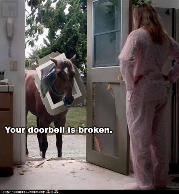 The door bell is broken